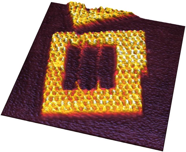 NanoWizard® 4 XP BioScience AFM - JPK BioAFM | Bruker